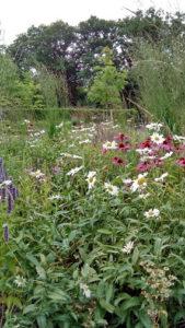 Jonsereds trädgårdar
